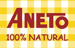 logo ANETO